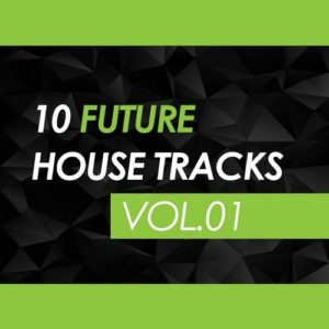 10 Future House Tracks, Vol. 01