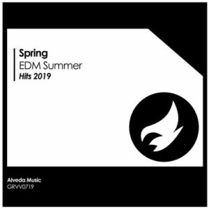 Spring EDM Summer Hits 2019